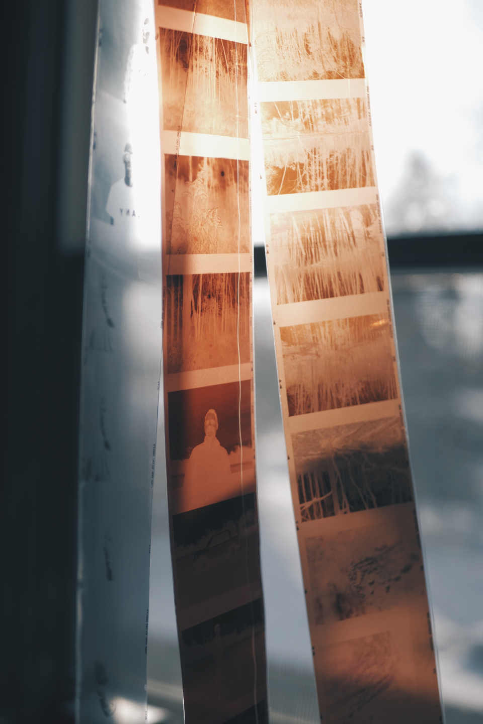 RAW photos is a kind of negatives in analog photography